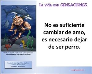 Diapositiva31